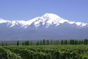 Argentina: Tangos, cataratas y viñedos