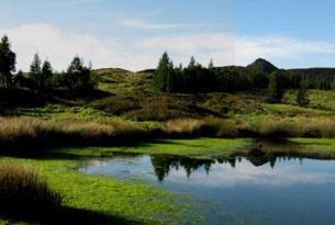 Azores: isla de Sao Miguel especial familias (niños hasta 11 años gratis)