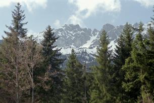 Fin de año en Baviera y Tirol en grupo