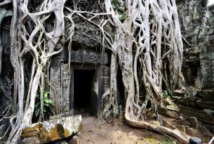 Vietnam minorías del norte, Halong, Delta y Templos de Angkor