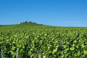Puente de mayo en la región Francesa de Champagne (exclusivo singles)