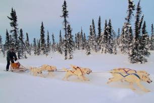 Canada: Aventura en Yukon
