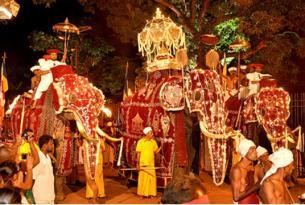 """Sri Lanka: """"La isla resplandeciente"""" FESTIVAL DEL PERAHERA"""
